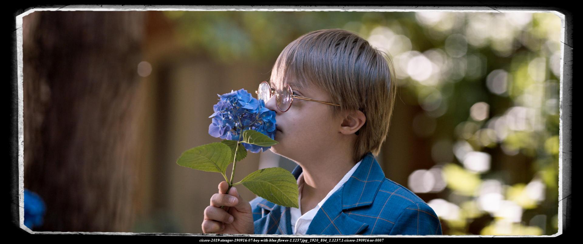 190916_boy smells on a big beautiful blue flower with closed eyes